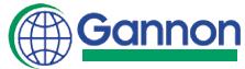 Gannon Travel